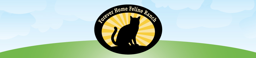 Forever Home Feline Ranch